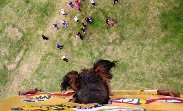 vuelos en globo baratos con mascota